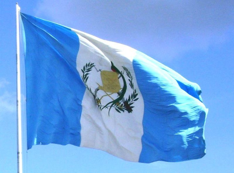 "Guatemaltecos se suman a la plataforma del Movimiento Semilla ""GUATEHABLA"""