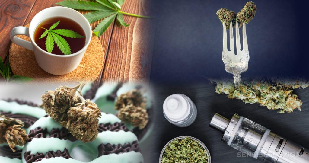 Propiedades de planta alternativa podrían ser cura del coronavirus